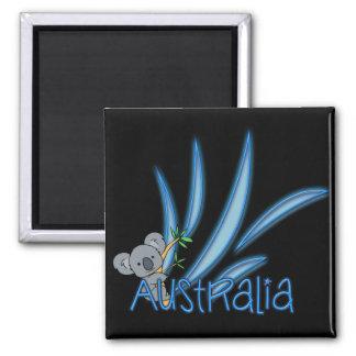 Aimant Koala de l'Australie