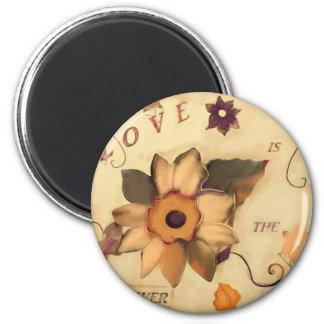 Aimant L'amour est la réponse