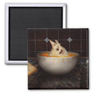 Aimant L'animal - lapin - il y a un lièvre en ma soupe
