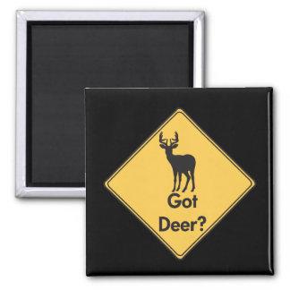 Aimant Le signe de route a obtenu des cerfs communs ?