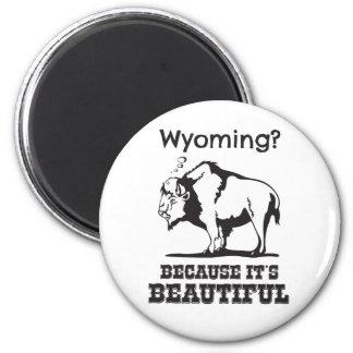 Aimant Le Wyoming ? Puisqu'il est beau