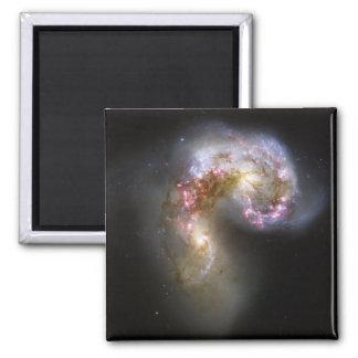 Aimant Les galaxies d'antennes