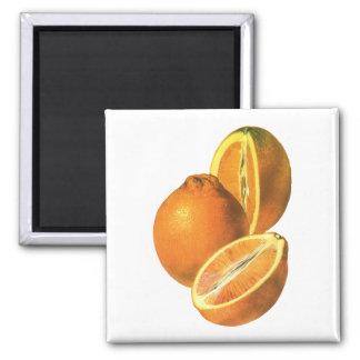 Aimant Les nourritures vintages, portent des fruits les