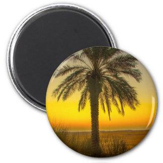 Aimant Lever de soleil de palmier
