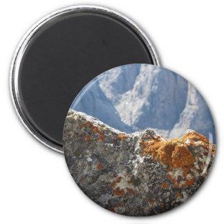 Aimant Lichens oranges s'élevant sur le visage de roche