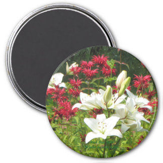 Aimant Lis asiatiques blancs rouges de baume d'abeille