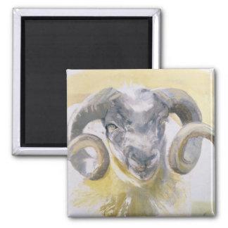 Aimant Longs moutons 2 de klaxon