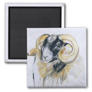 Aimant Longs moutons de klaxon
