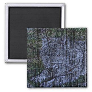 Aimant Loup gris de camouflage de faune sauvage de région