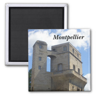 Aimant Montpellier -
