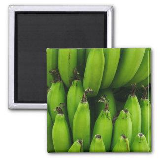 Aimant Motif vert de fruit de banane