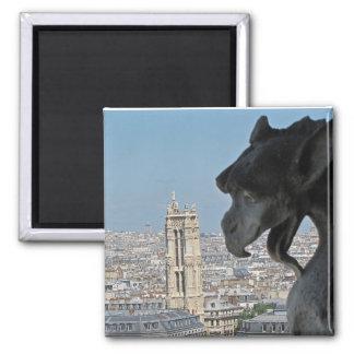 Aimant : Notre-Dame de Paris - gargouille