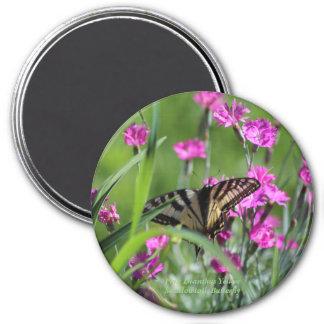 Aimant Oeillet rose et papillon jaune de machaon