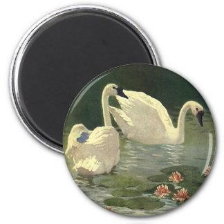 Aimant Oiseaux vintages d'animaux sauvages, cygnes blancs