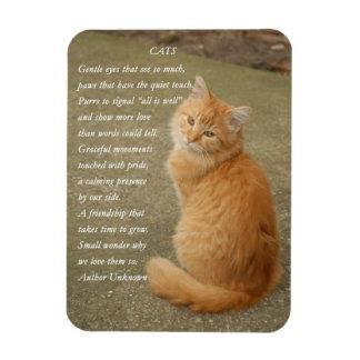 Aimant orange mignon de poème de chat de photo de magnets