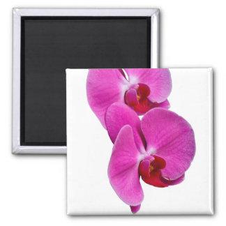 Aimant Orchidée