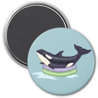 Aimant Orque dans une piscine