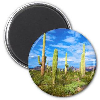 Aimant Paysage de cactus de désert, Arizona