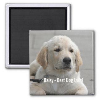 Aimant Photo personnalisée et nom de chien de golden
