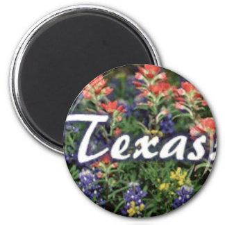 Aimant Pinceaux de Bluebonnets de Texas