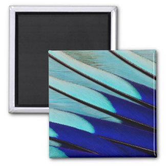 Aimant plumes Bleu-gonflées de rouleau