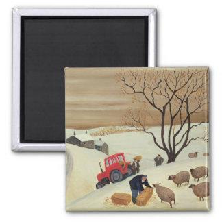 Aimant Prise du foin aux moutons par le tracteur