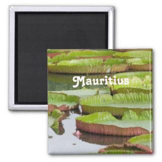 Aimant Protections de lis des Îles Maurice
