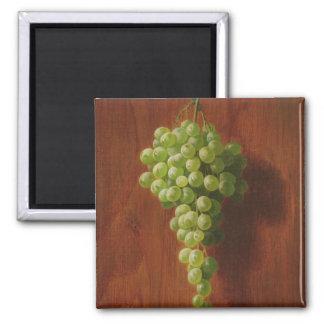 Aimant Raisins verts