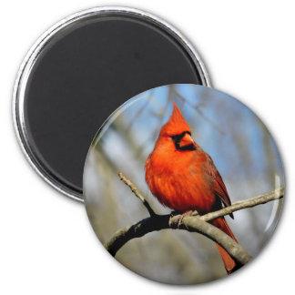 Aimant rond (ensoleillé) cardinal du nord