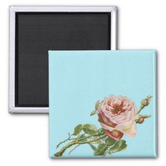 Aimant Rose vintage de rose sur l'Aqua pâle
