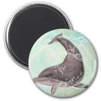 Aimant Salutation de dauphin