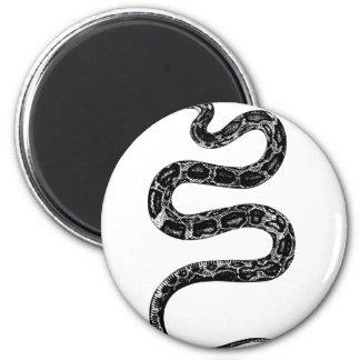 Aimant Serpent rampant
