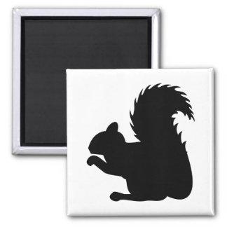 Aimant Silhouette d'écureuil