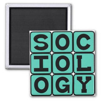 Aimant Sociologie, l'étude du comportement humain