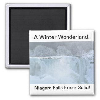 Aimant solide congelé par chutes du Niagara
