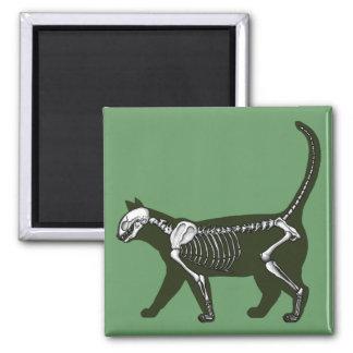 Aimant Squelette de chat