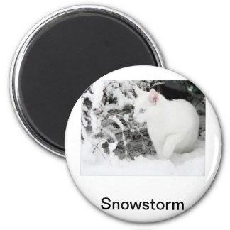 Aimant Tempête de neige