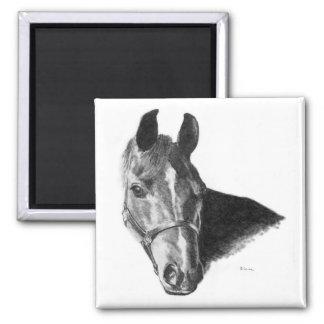 Aimant Tête de cheval de graphite
