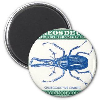 Aimant Timbre-poste 1948 de scarabée de mâle du Chili