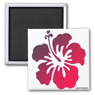 Aimant tropical de fleur de ketmie