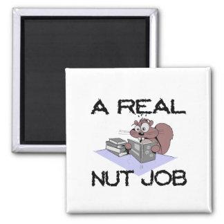 Aimant Un vrai écureuil du travail d'écrou