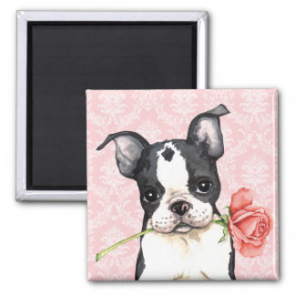 Aimant Valentine Boston rose Terrier