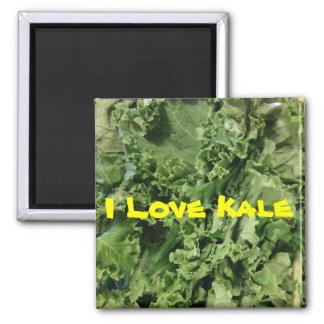 Aimant Végétalien vert clair de chou frisé d'amour d'I