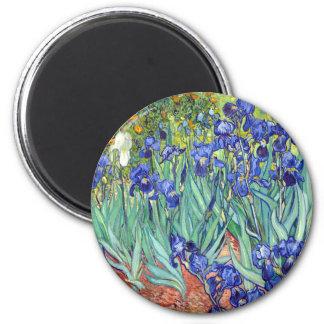 Aimant Vincent van Gogh 1889 iris