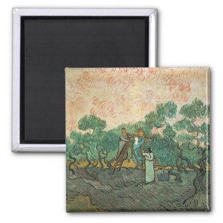 Aimant Vincent van Gogh | les récolteuses olives,