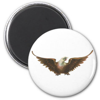 Aimant Vol américain d'oiseau d'Eagle chauve de