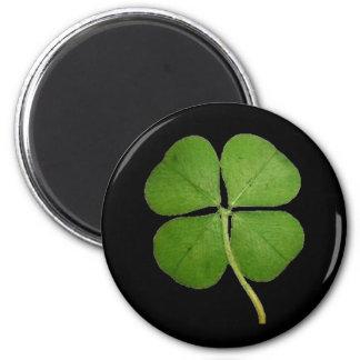 Aimant Vrai noir de shamrock de trèfle de 4 feuilles