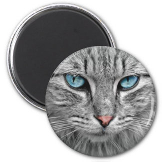 Aimant Yeux gris du chat w/Blue