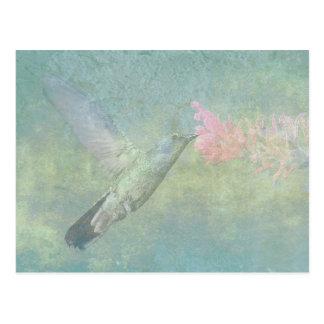 Air de colibri cartes postales