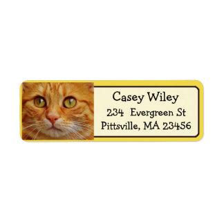 Ajoutez la photo de votre chat à cet étiquette de